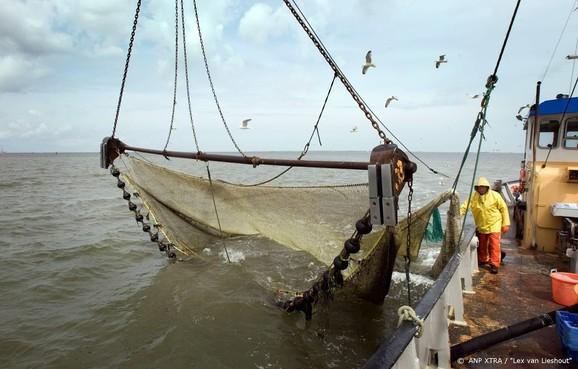 'Veel te lang op garnalen gevist in beschermd gebied'