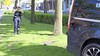 Bedrijfsbus schiet over de rijbaan in Katwijk en knalt tegen een boom aan, politie vordert rijbewijs van bestuurder in