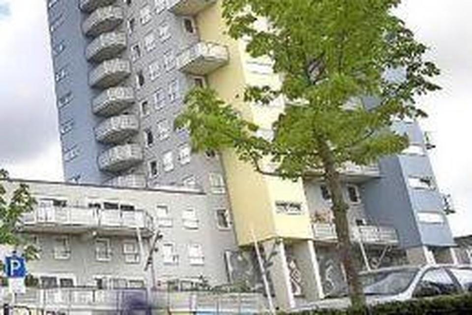 De Kopermolen heeft een hoge 'buurman' en krijgt er mogelijk een bij op het dak.