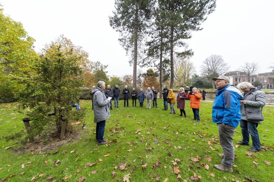 Rinny E. Kooi legt aan Vrienden van het Singelpark uit hoe bijzonder taxus Jan is.