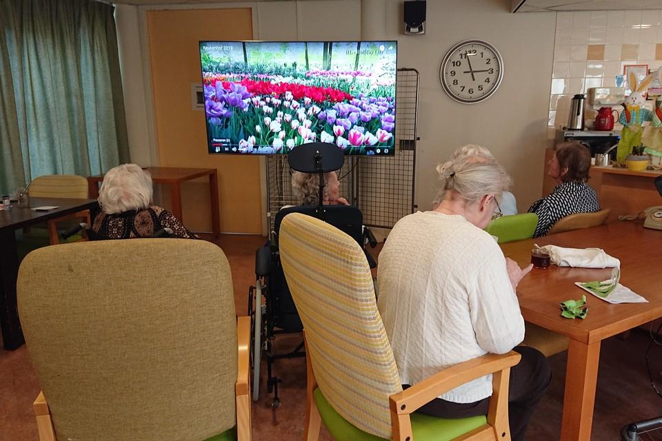 Een bezoek aan Keukenhof zit er niet in, maar de bewoners die dat wensen kunnen wel via een beeldscherm genieten van al het moois van de bloementuin.