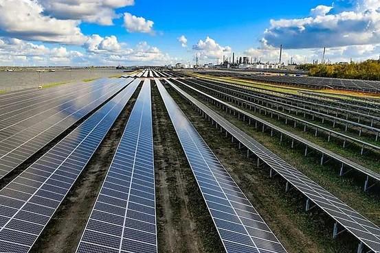 Onderzoek Naturalis: zonnepark is niet slecht, maar juist goed voor de natuur