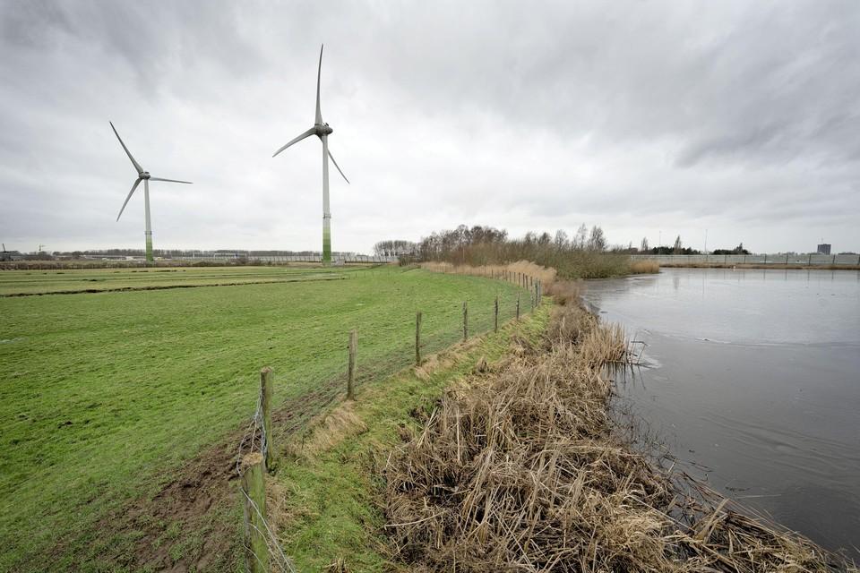 Op 24 juni neemt de gemeenteraad van Alphen aan den Rijn een besluit over de komst van windmolens langs de N11.