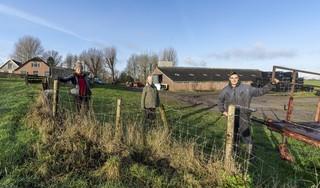 Leimuidense herenboeren aan de slag op lap grond aan Vriezekoop-Noord: 'We zijn in mei heel blij als we onze sla oogsten'