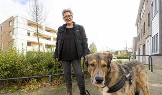 Jolanda en Team Arie sporen vermiste honden en katten op: 'Al heb ik maar één procent kans dat ik een hond terugvind, dan ga ik m'n bed uit'