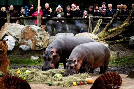 Tien dieren dood door brand in Safaripark Beekse Bergen