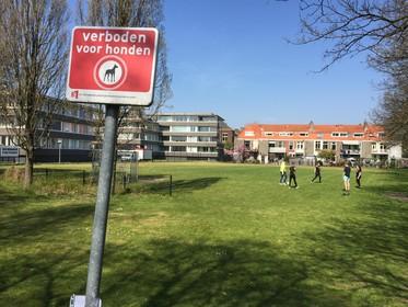 Verdamstraat in Leiden maakt zich op voor juridische strijd met gemeente over wooncontainers