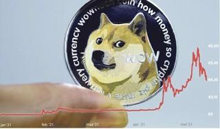 Uit de hand gelopen grap levert Dante (21) uit Haarlem duizenden euro's op. Is Dogecoin het nieuwe goud of wordt het een betaalmiddel?