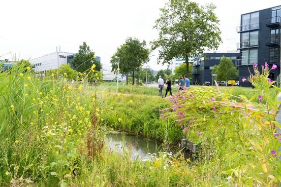 Herinrichting Leids Bio Science Park komt uit op 17 miljoen