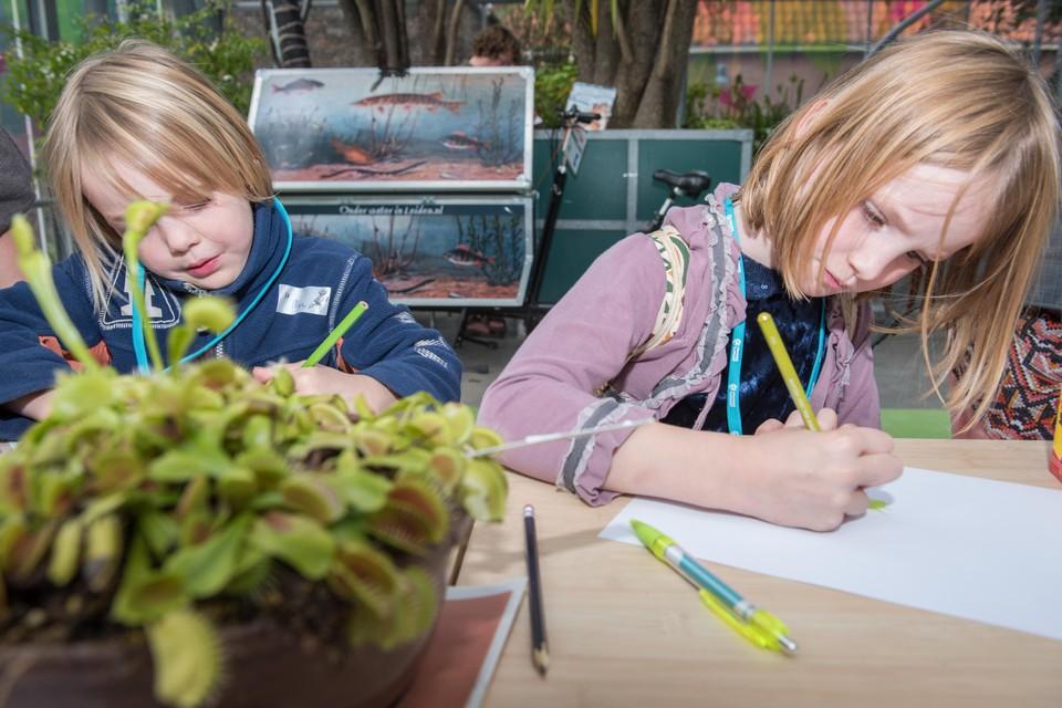 Kinderen onderzoeken een vleesetende plant tijdens een activiteit van het Verwonderpaspoort.