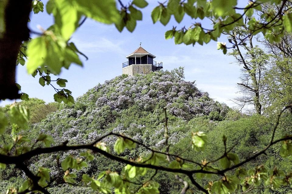 De Seringenberg op landgoed De Horsten, maakt deel uit van de Prins Frederikparkenroute