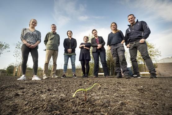 Een park vol groente en fruit: Leidse Voedselbank gaat zelf kweken