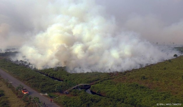Bijna 200 arrestaties om bosbranden Indonesië