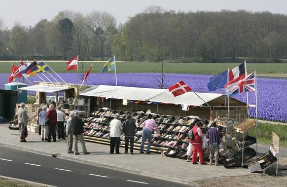 Kraamhouders bloembollenboulevard Lisse beloven te stoppen met verkoop voorjaarsbollen