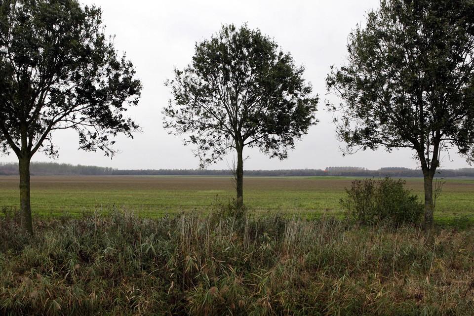 De oneindige velden tussen Almere en Zeewolde, zoals hier bij Oosterwold, liggen te wachten op woningbouw.