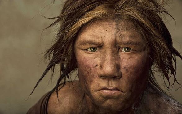 Neanderthalers maakten lijm van berk