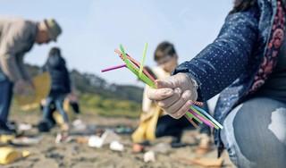Alle troeptrimmers, afvalrapers en puinruimers verzamelen! 19 september is dé dag om met grijptang en vuilniszak Nederland een beetje schoner te maken