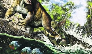 Dader na 13 miljoen jaar bekend