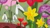 Bijzondere bolgewassen in Hortus botanicus: 'Mijn moeder was ook al gek op Amaryllissen'