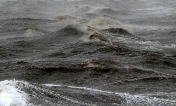 Onderzoek naar effecten van onderwatergeluid in Noordzee