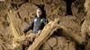 Voormalig marathonschaatser Joost Juffermans heeft een florerend rietdekkersbedrijf. 'Kijk naar Gooische Vrouwen, allemaal villa's met een rieten dak' [video]