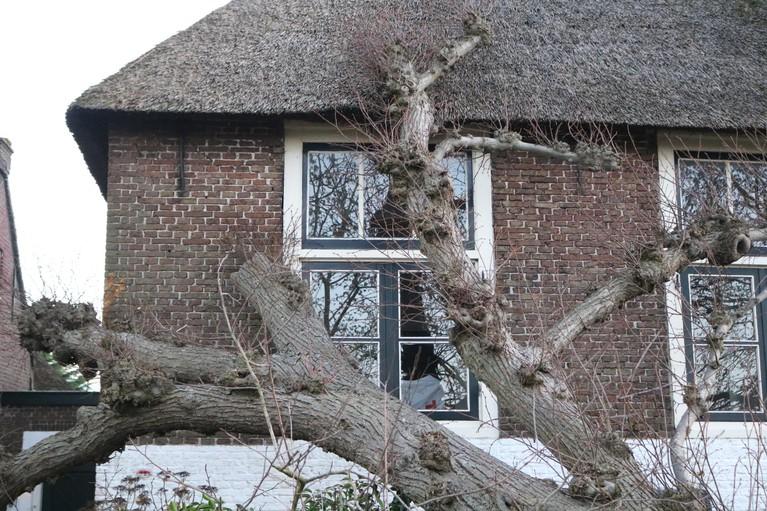 Boom valt op vrijstaand huis in Voorhout