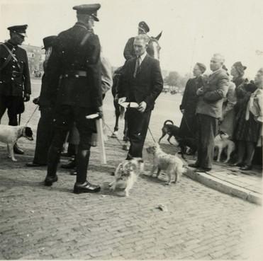 Vordering van honden in Beverwijks oorlogsgebied