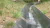 Slang duikt op in rodelbaan Duinrell [video]