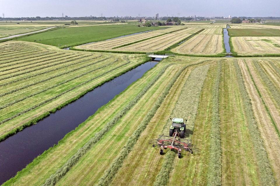 Droog weer en maaien maar, zoals hier langs de provinciale weg tussen Leiderdorp en Rijpwetering.