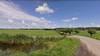 Veehouders willen snel aanlijngebod voor Sassenheimse polders: 'Het lijkt hier af en toe de Kalverstraat wel'