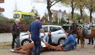 Meisje en haar paard komen hard ten val in Rijnsburg